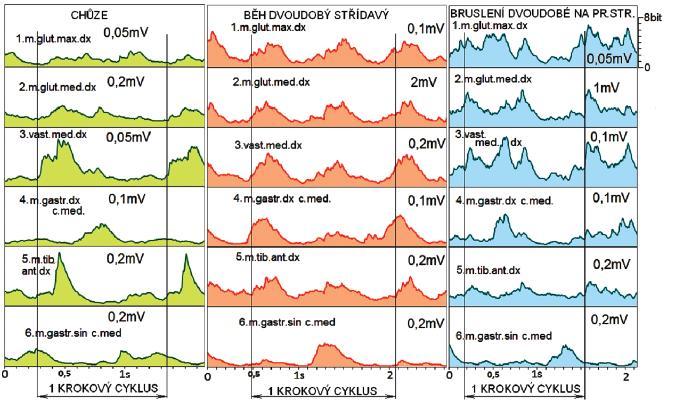 EMG záznam vybraného pracovního kroku volné bipedální chůze, pracovního kroku při klasické technice běhu na lyžích dvoudobém střídavém a pracovního kroku při oboustranném dvoudobém bruslení na lyžích, s orientací na pravou stranu.