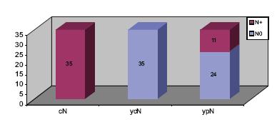 Klasifikace N souboru s klinickou kompletní remisí metastáz.