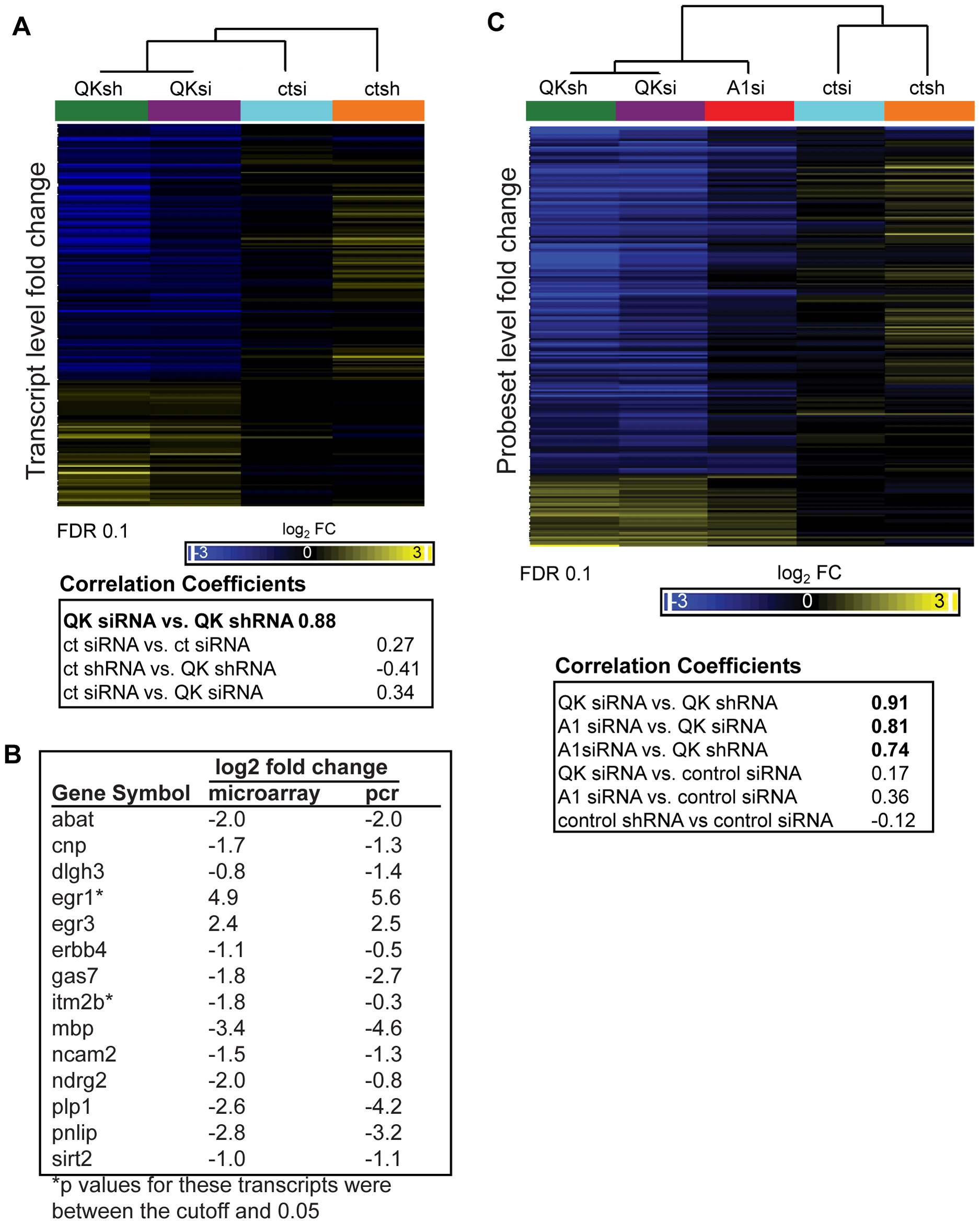 Identification of the QK and hnRNP A1 regulatory networks in CG-4 cells.