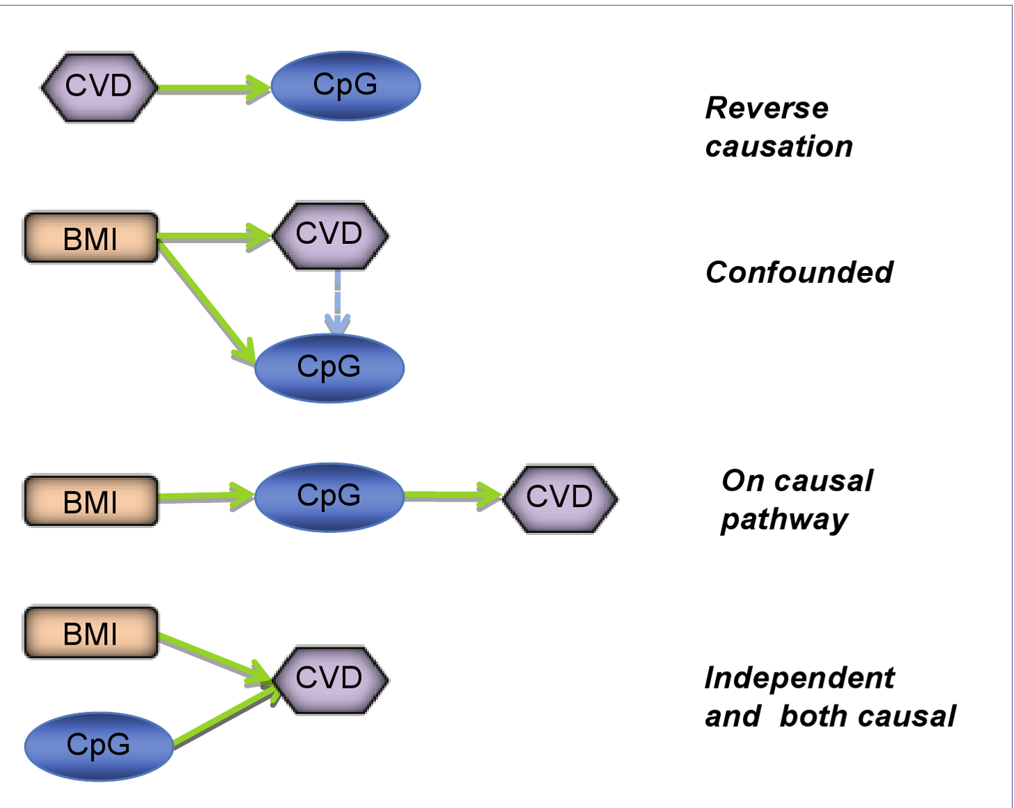 Defining the causal relationship between epigenetic patterns and phenotype.