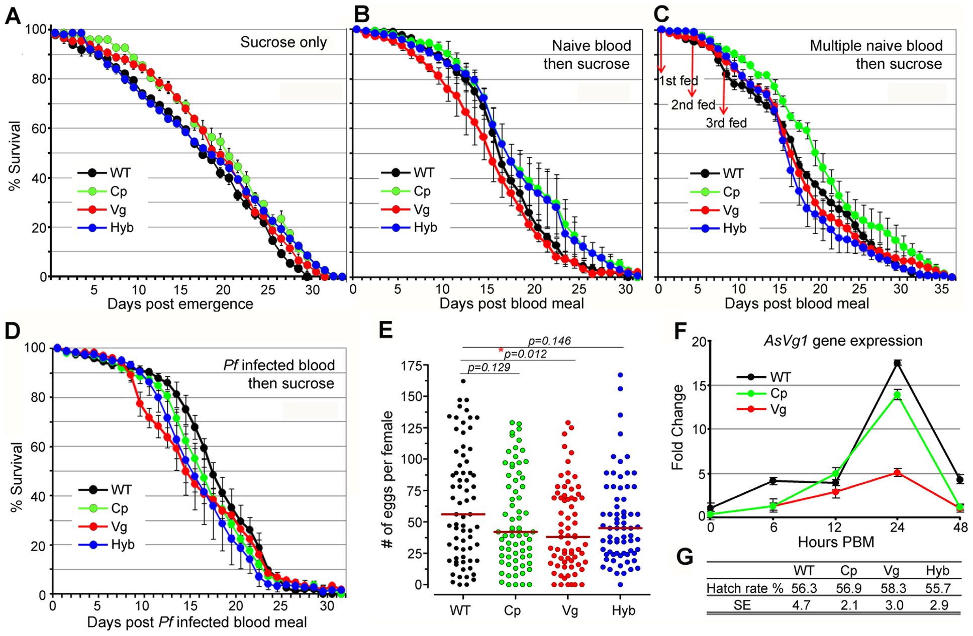 Fitness assessment of immune-enhanced transgenic mosquitoes.