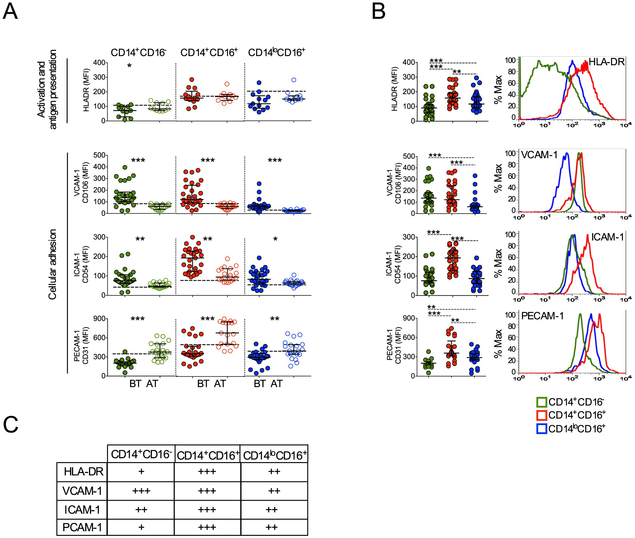 Monocyte subsets from <i>P. vivax</i>-infected patients display a highly activated phenotype.