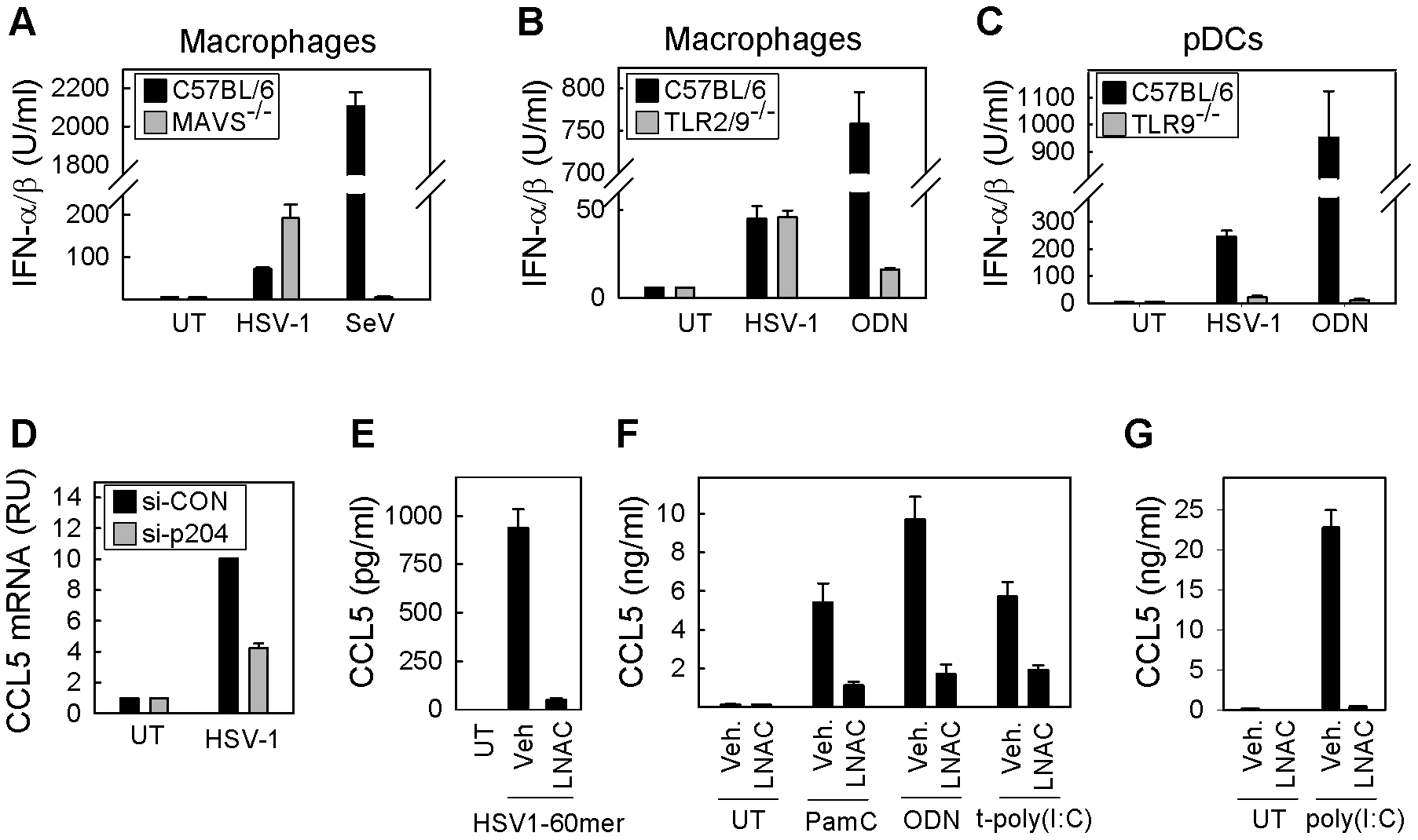 ROS and innate antiviral response: Cell-type and PRR dependence.