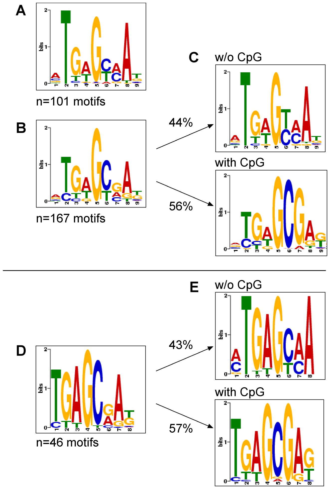 Motif discovery of Zta bound to unmethylated, CpG-methylated EBV DNA or Raji cell chromatin.