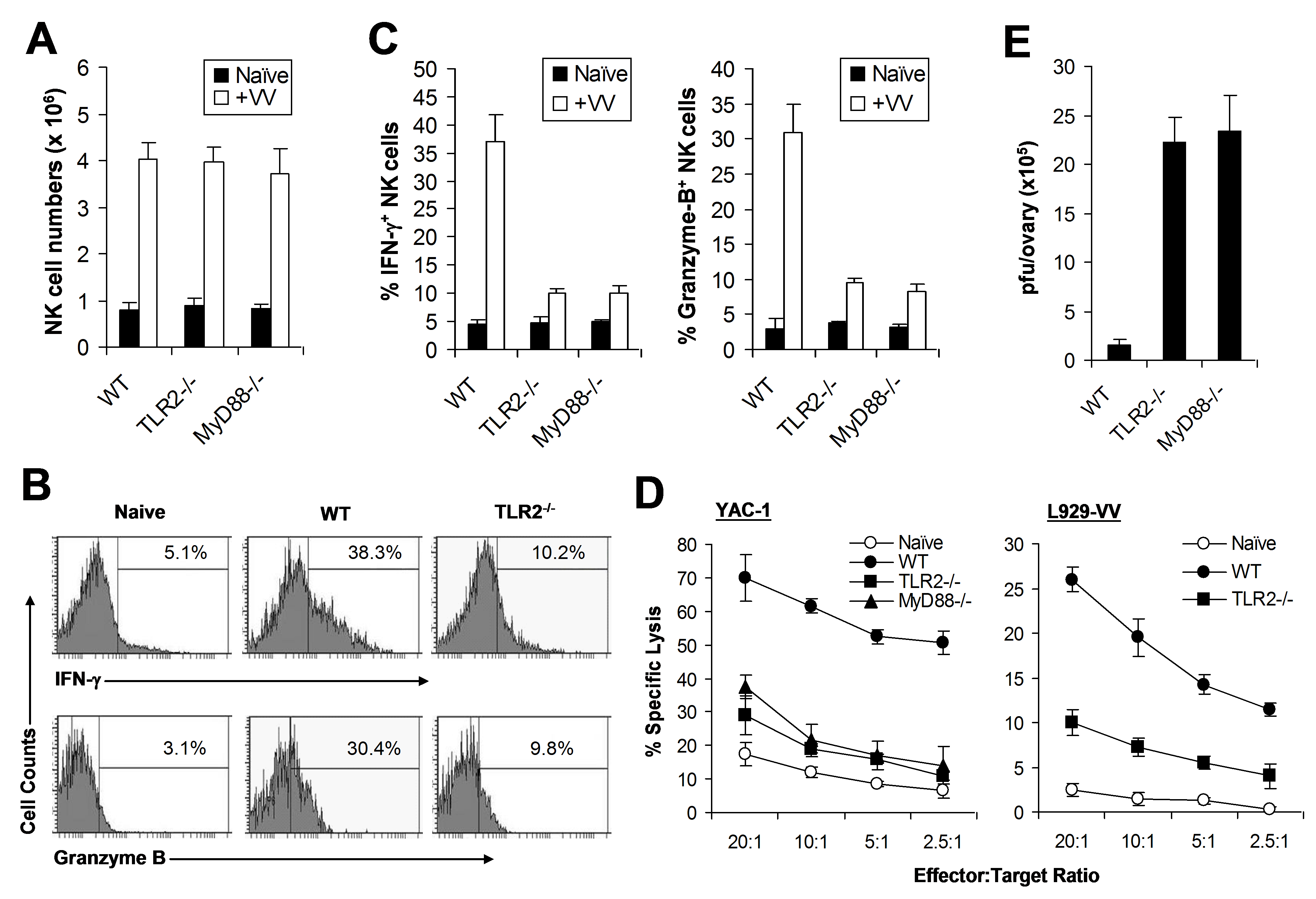 NK cell activation and function in response to VV in vivo requires an intact TLR2-MyD88 pathway.