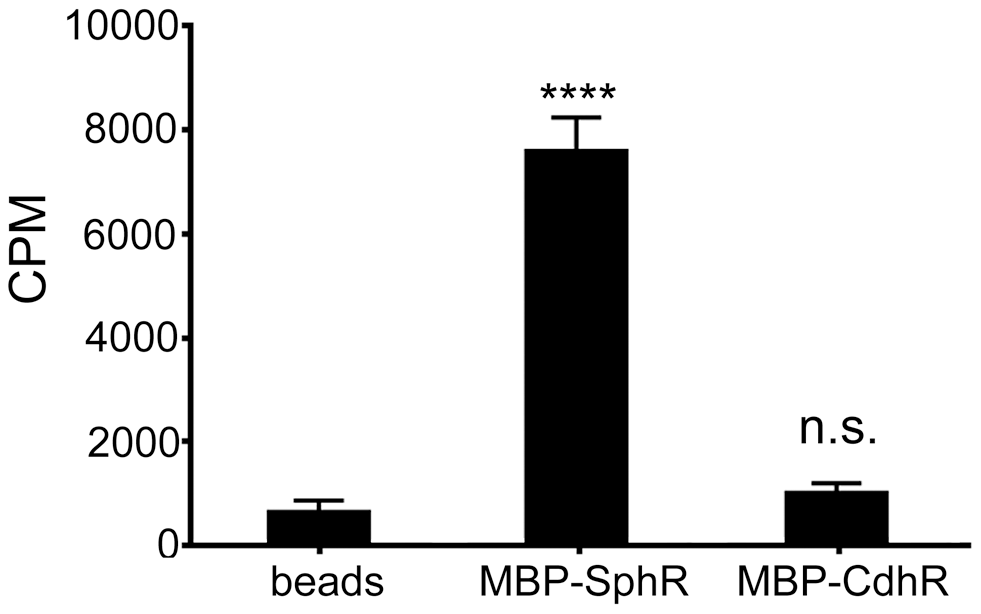 SphR directly binds to sphingosine.