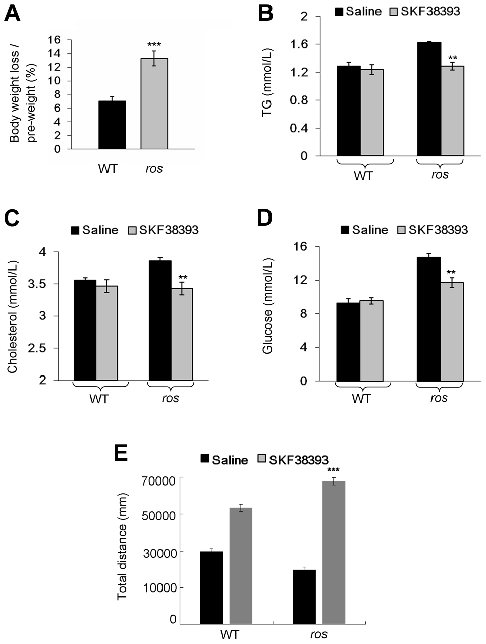 Effect of SKF38393 treatment on body weight loss, serum lipids and glucose, and activity of wild-type or <i>ros</i> mice.