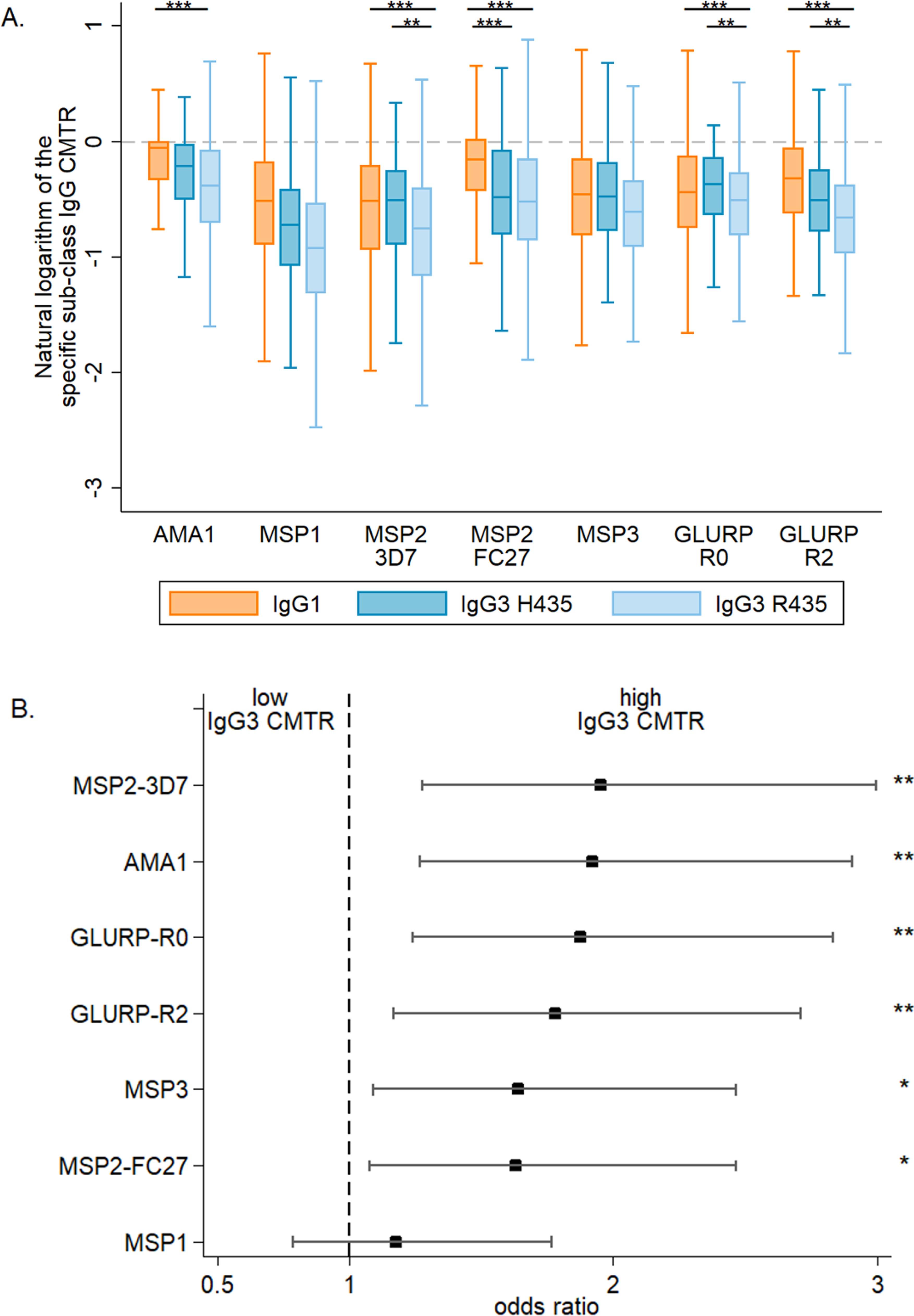 The cord-to-mother transfer ratio of malaria-specific IgG1, IgG3-R435, and IgG3-H435.