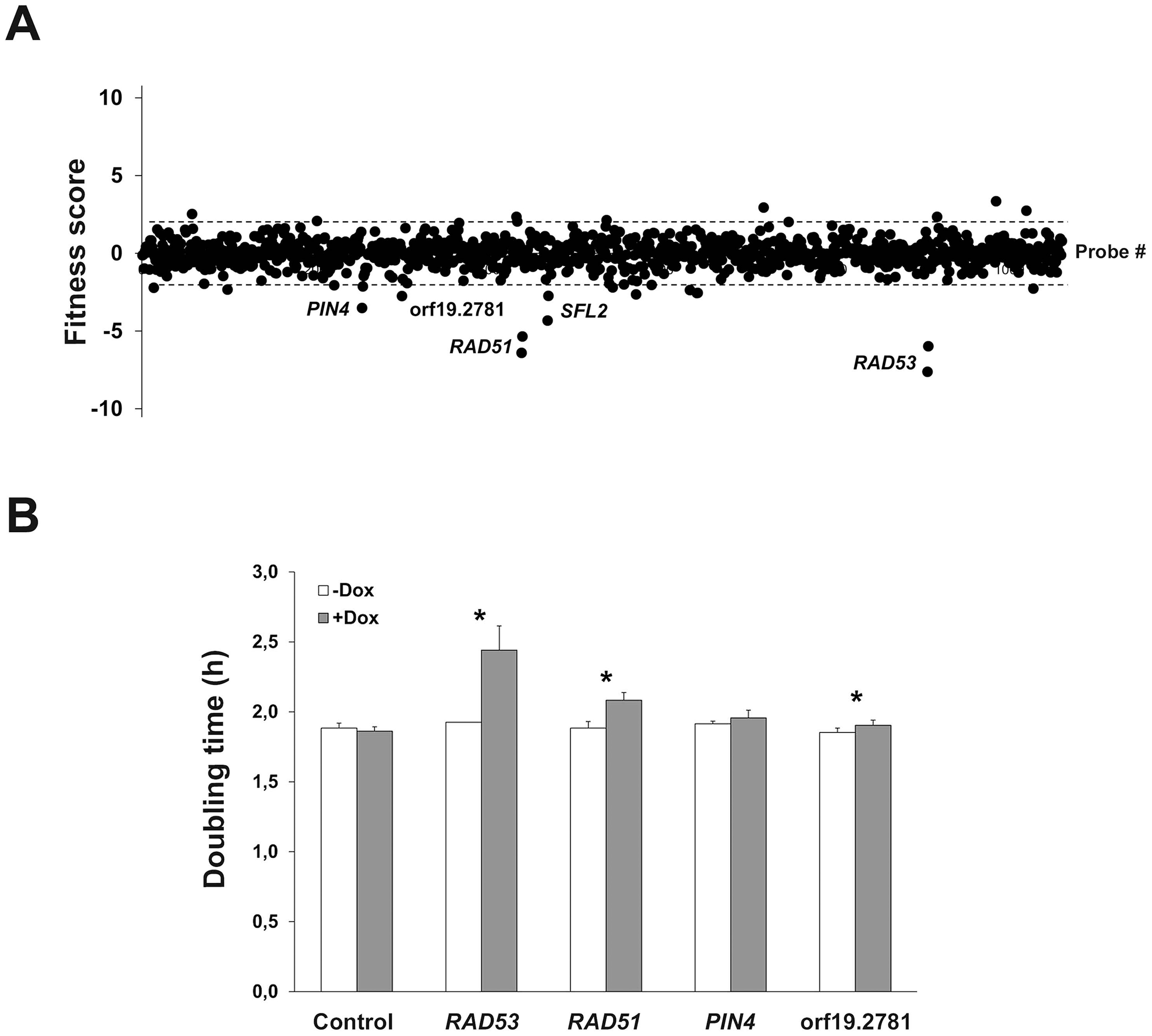Identification of genes whose overexpression alters planktonic cell fitness.