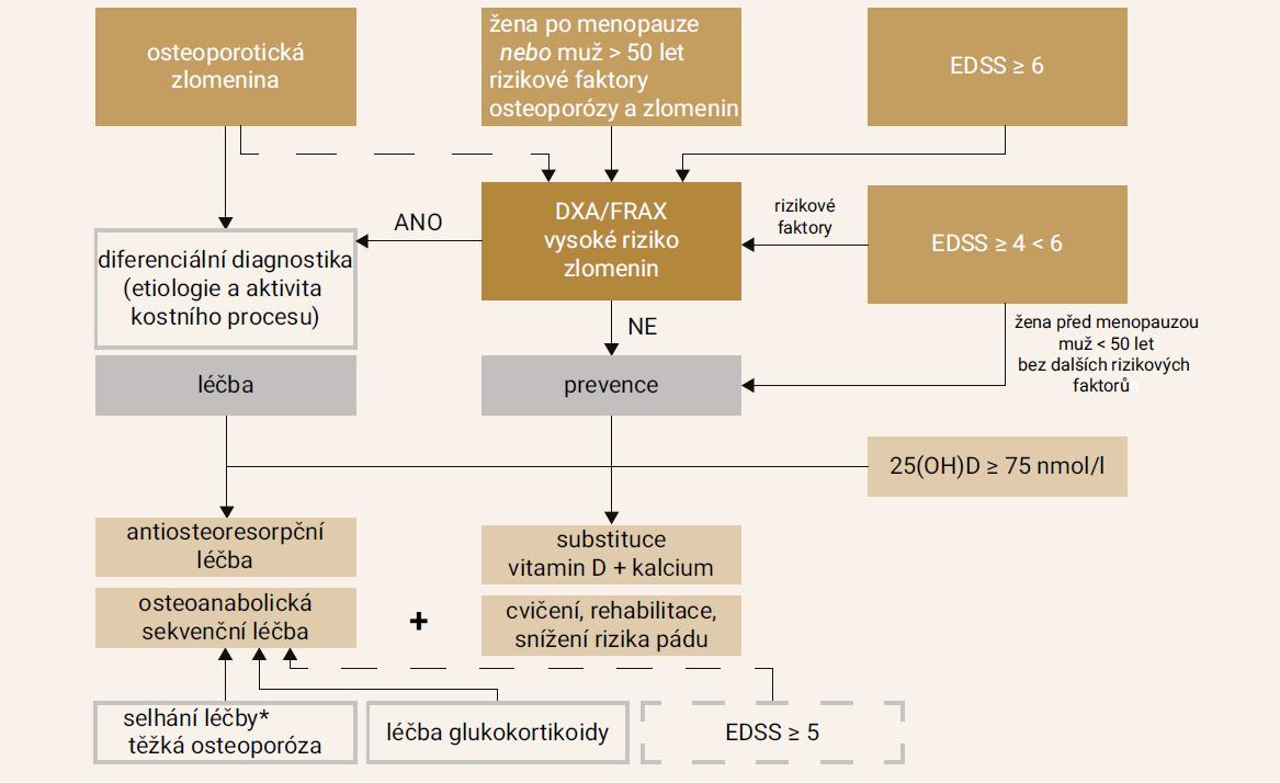 Schéma 3. Algoritmus pro vyhledávání a vyšetření osteoporózy u pacientů s roztroušenou sklerózou