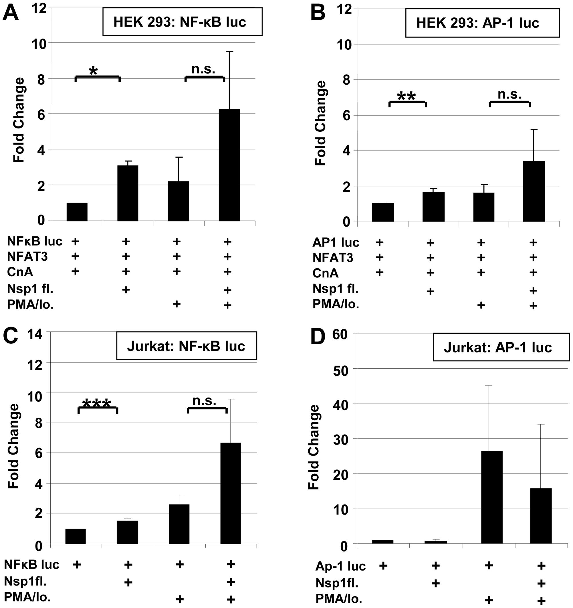 Influence SARS-CoV Nsp1fl on transcription factors NF-κB and AP-1.