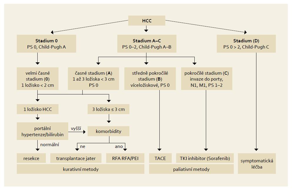 """Základní léčebné postupy HCC dle """"Barcelonské"""" klasifikace. Fig. 3. Basic treatment procedures for HCC according to the """"Barcelona"""" classification."""