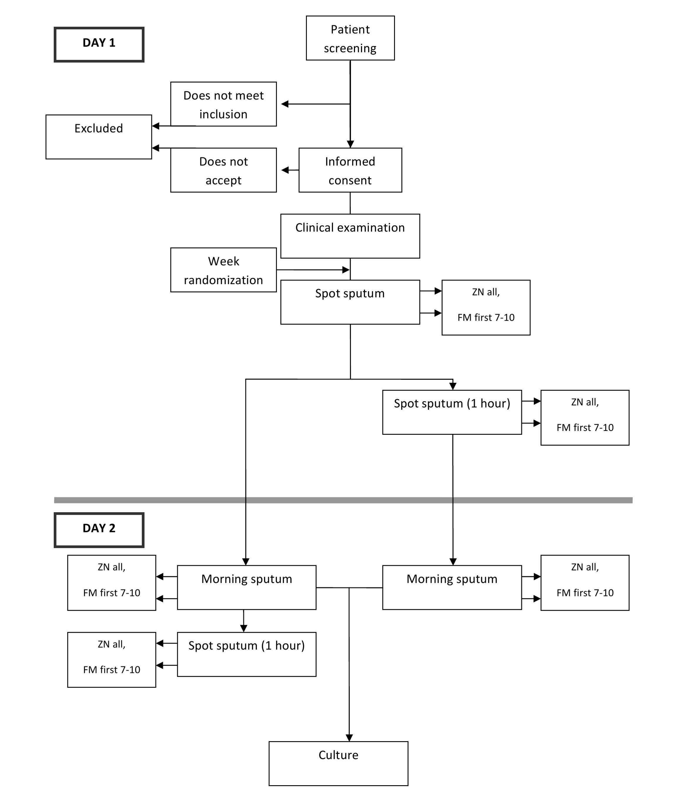 Depiction of flow of participants.