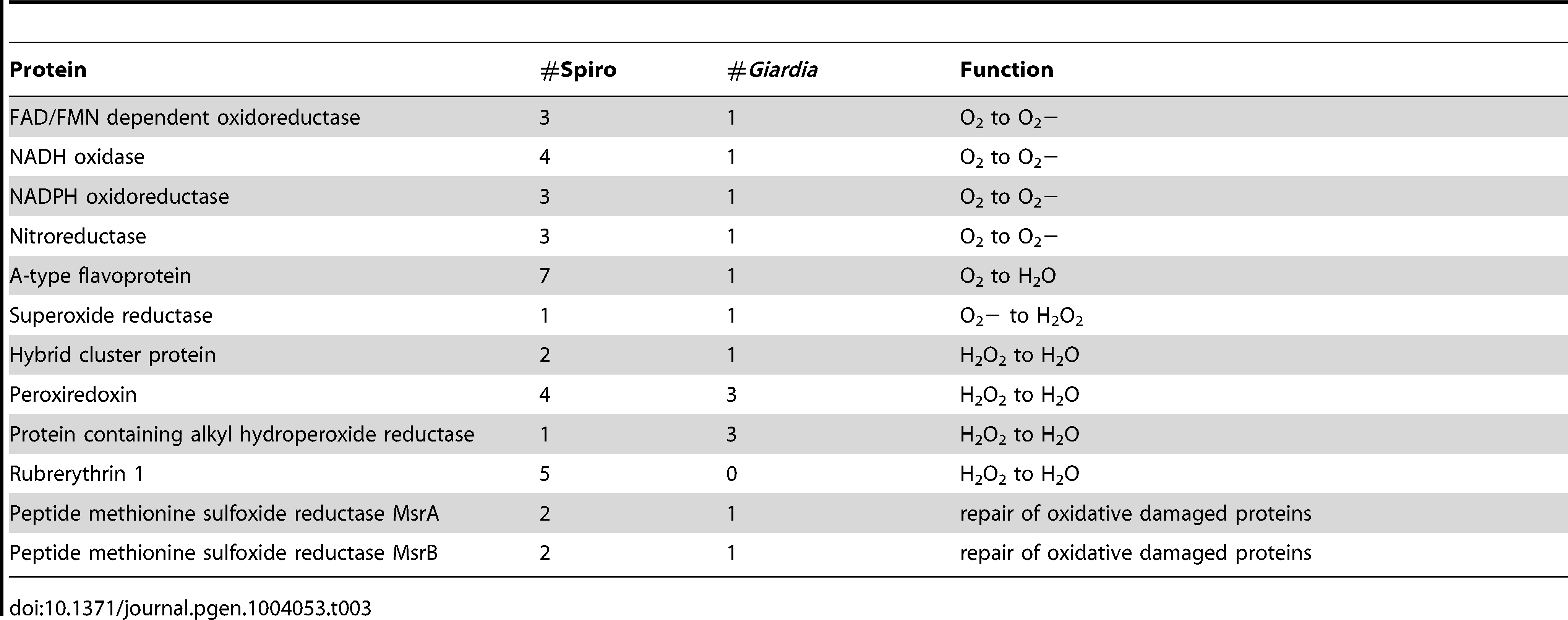 Enzymes involved in the oxidative stress response.
