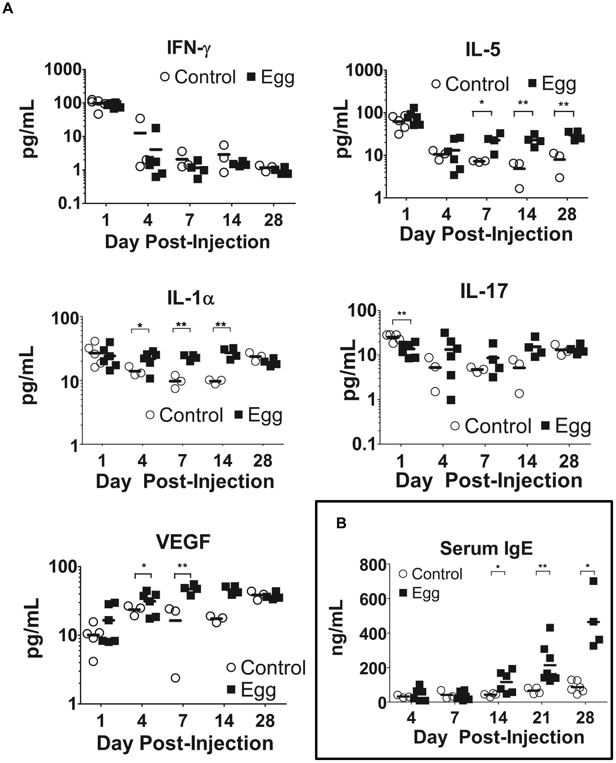 <i>S. haematobium</i> egg-injected mice display systemic Type 2 cytokine and immunoglobulin responses.