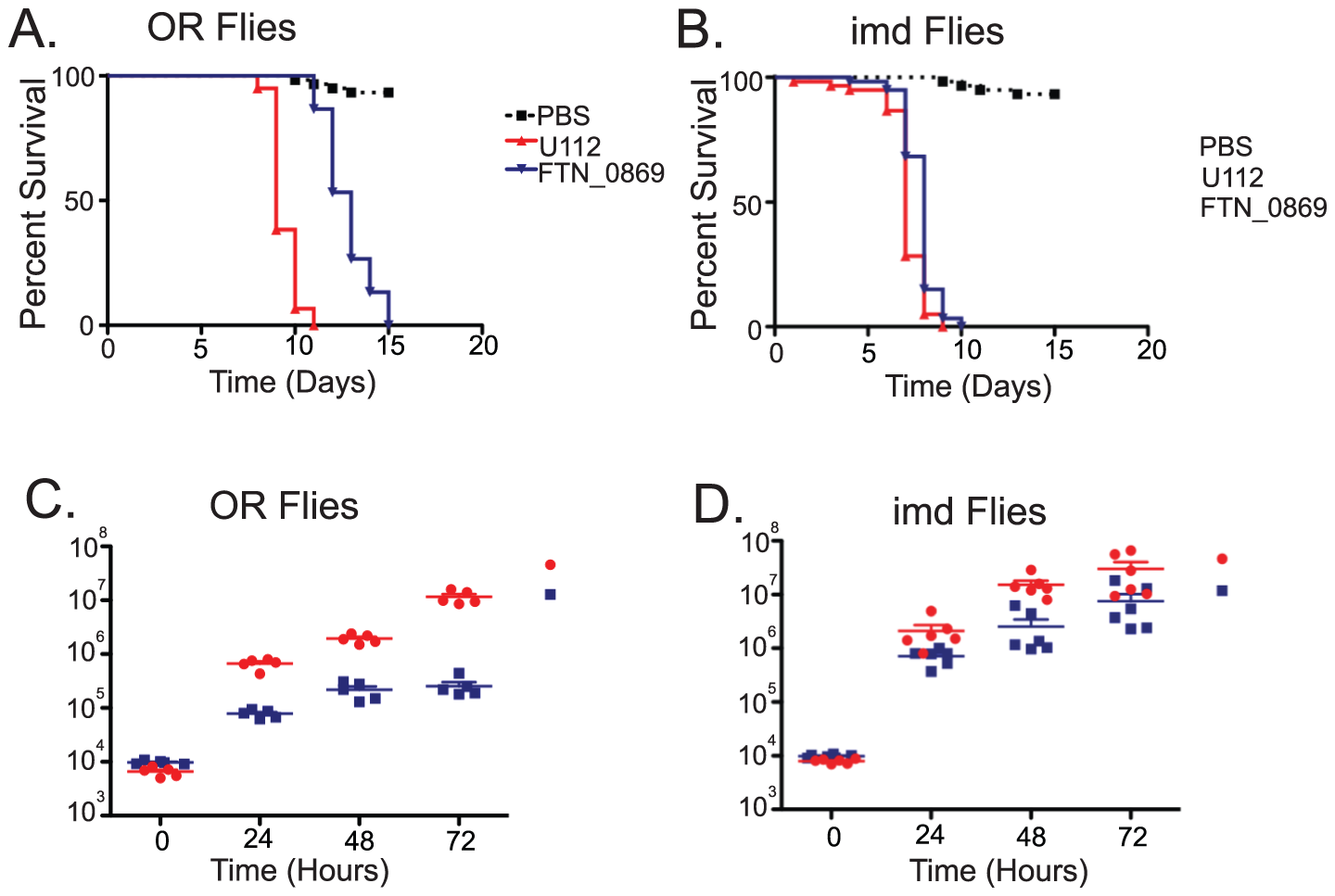 <i>F. novicida</i> deletion mutants of a putative transglutaminase are severely attenuated in virulence and growth.