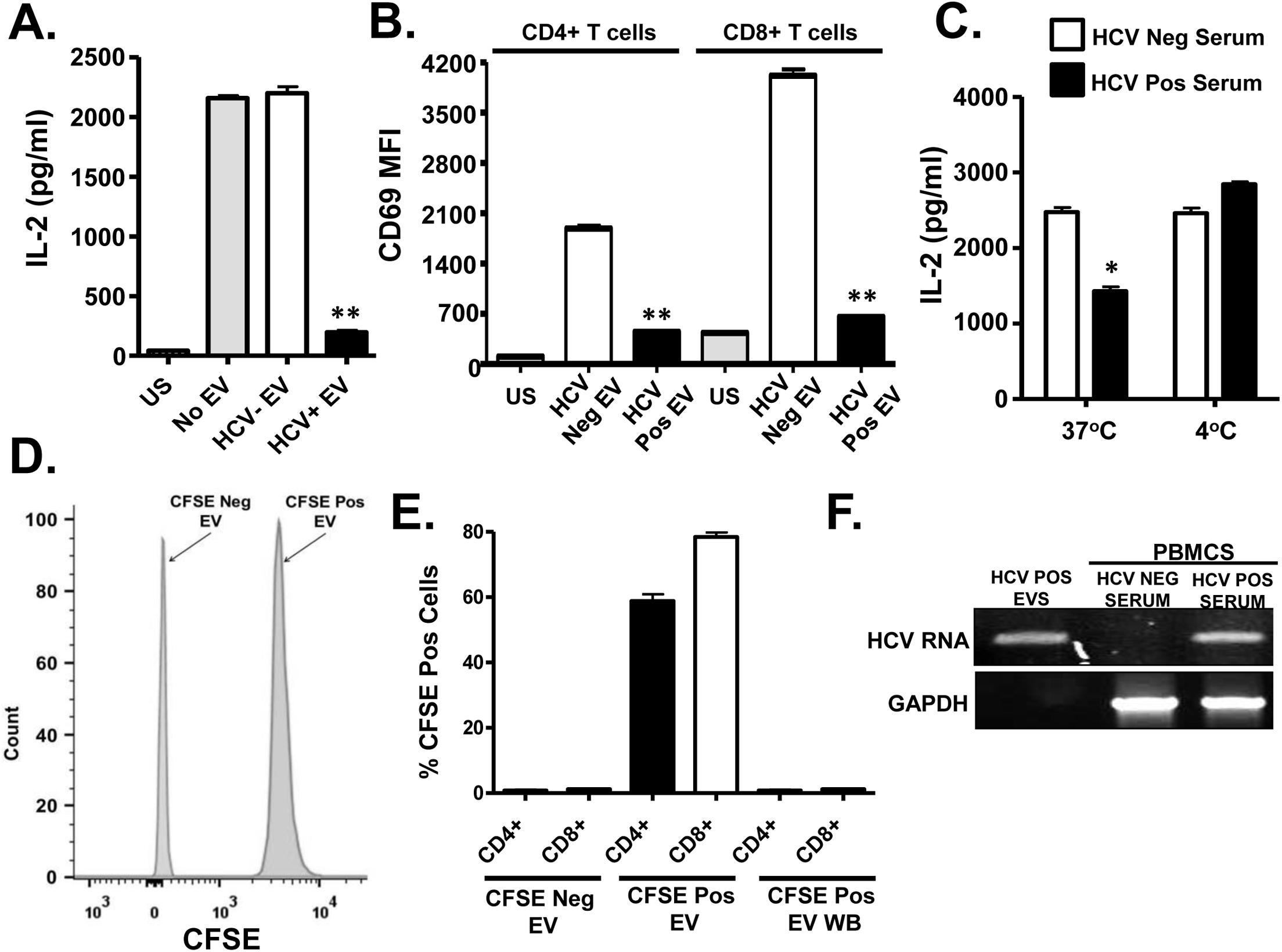HCV serum derived extracellular vesicles (EV) inhibit T cell receptor (TCR) signaling in primary human T lymphocytes.