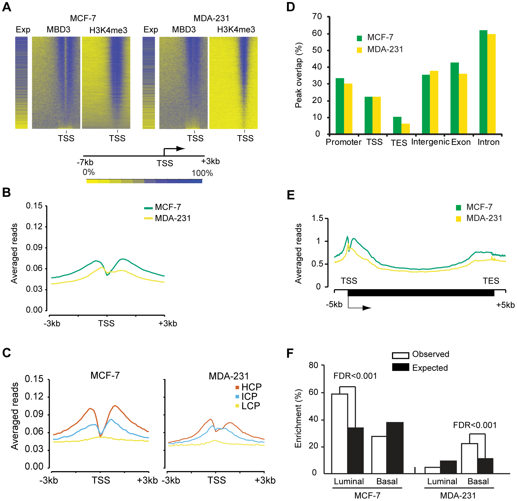 MBD3 localizes to active promoters and to other genomic regions.