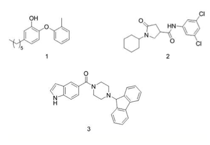 Fig. 1. Structures of standard InhA inhibitors