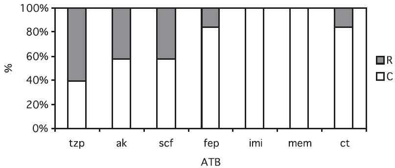 Citlivost producentů AmpC k různým antibiotikům Fig. 1. Antibiotic susceptibility of AmpC producers Zkratky: tzp – piperacilin/tazobaktam, ak – amikacin, scf – cefoperazon/sulbaktam, fep - cefepim, imi – imipenem, mem- meropenem, ct – kolistin, R – rezistentní, C – citlivý Abbreviations: tzp – piperacillin/tazobactam, ak – amikacin, scf – cefoperazon/sulbactam, fep - cefepim, imi – imipenem, memmeropenem, ct – colistin, R – resistant, C – susceptible
