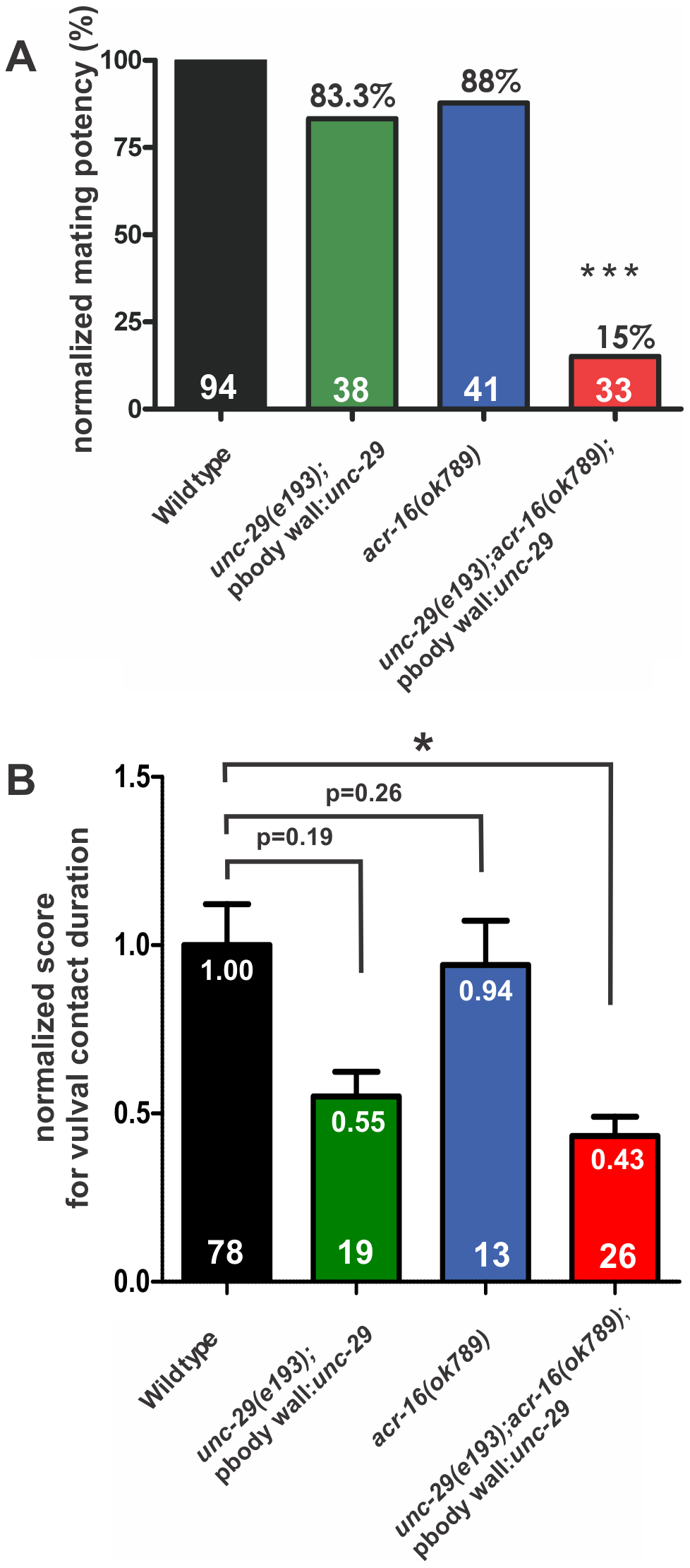 Ionotropic ACh receptors are required for sustained vulval contact.