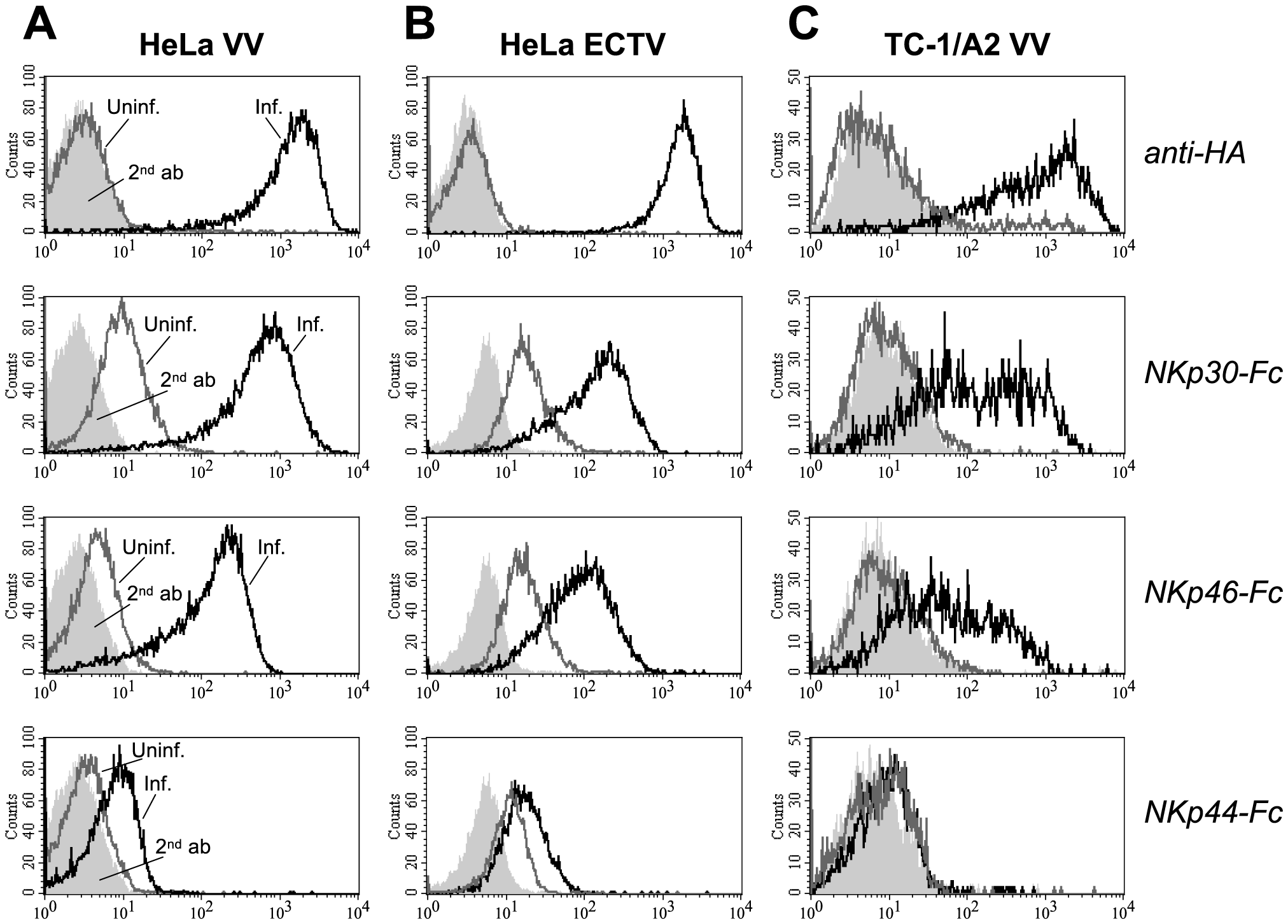 Infection with vaccinia (VV) and ectromelia virus (ECTV) induces ligand structures for NKp30 and NKp46.