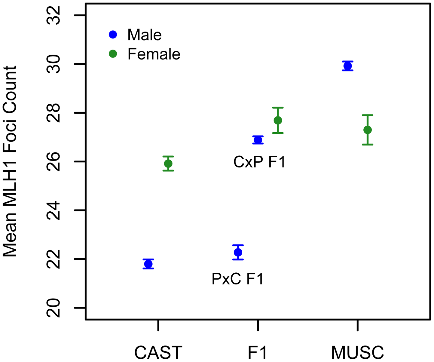 Variation in mean MLH1 foci counts (±2 standard errors) between males (blue) and females (green) of inbred CAST, PWD, and inter-subspecific CASTxPWD (CxP) and PWDxCAST (PxC) F1 origin.