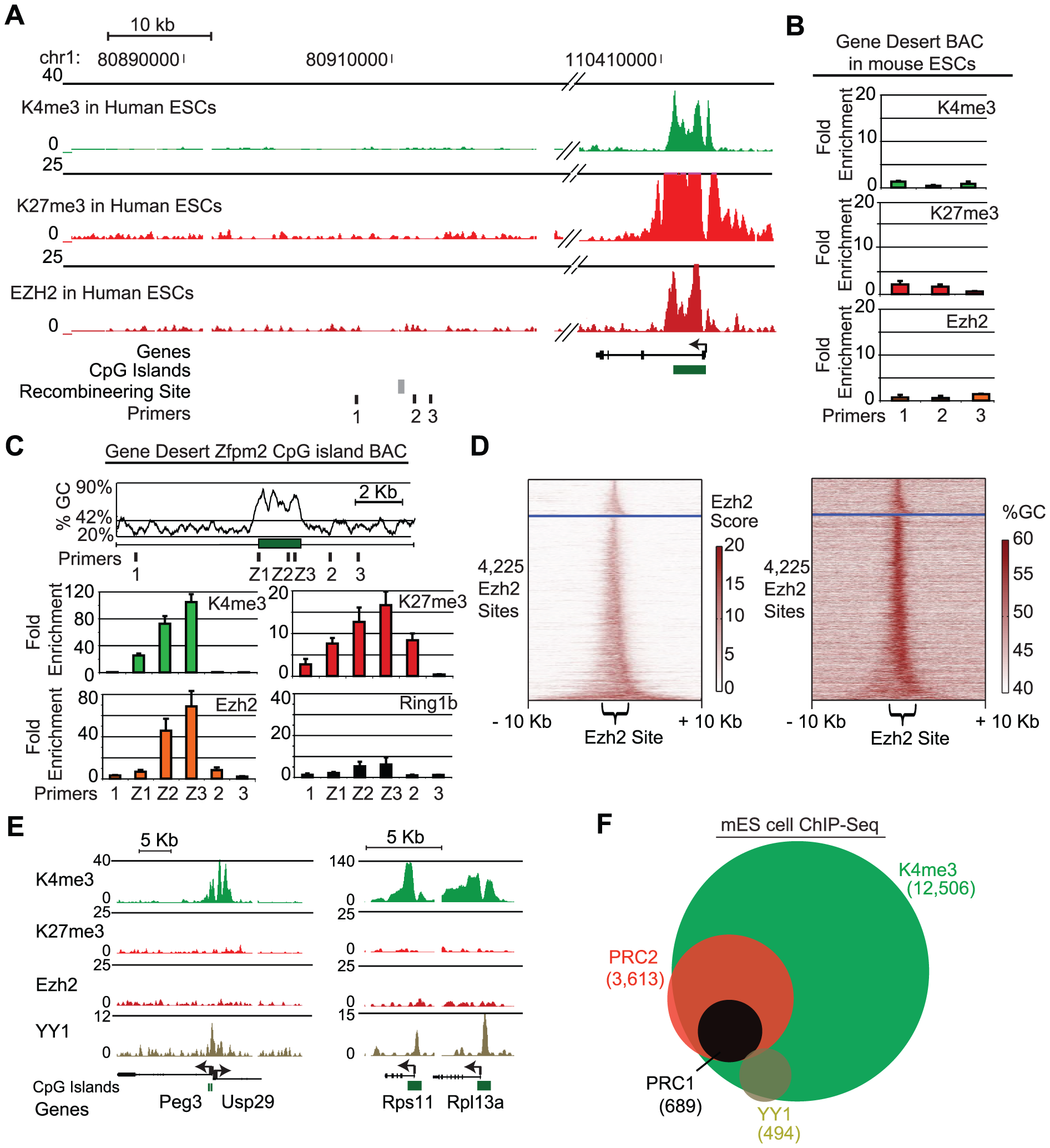 A 1.7 kb GC-rich sequence element is sufficient to recruit PRC2.