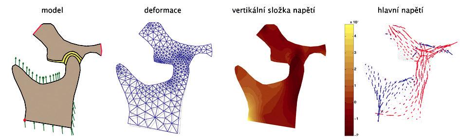 Série obrázků pro model č. 3 - a, b, c, d - zleva doprava.