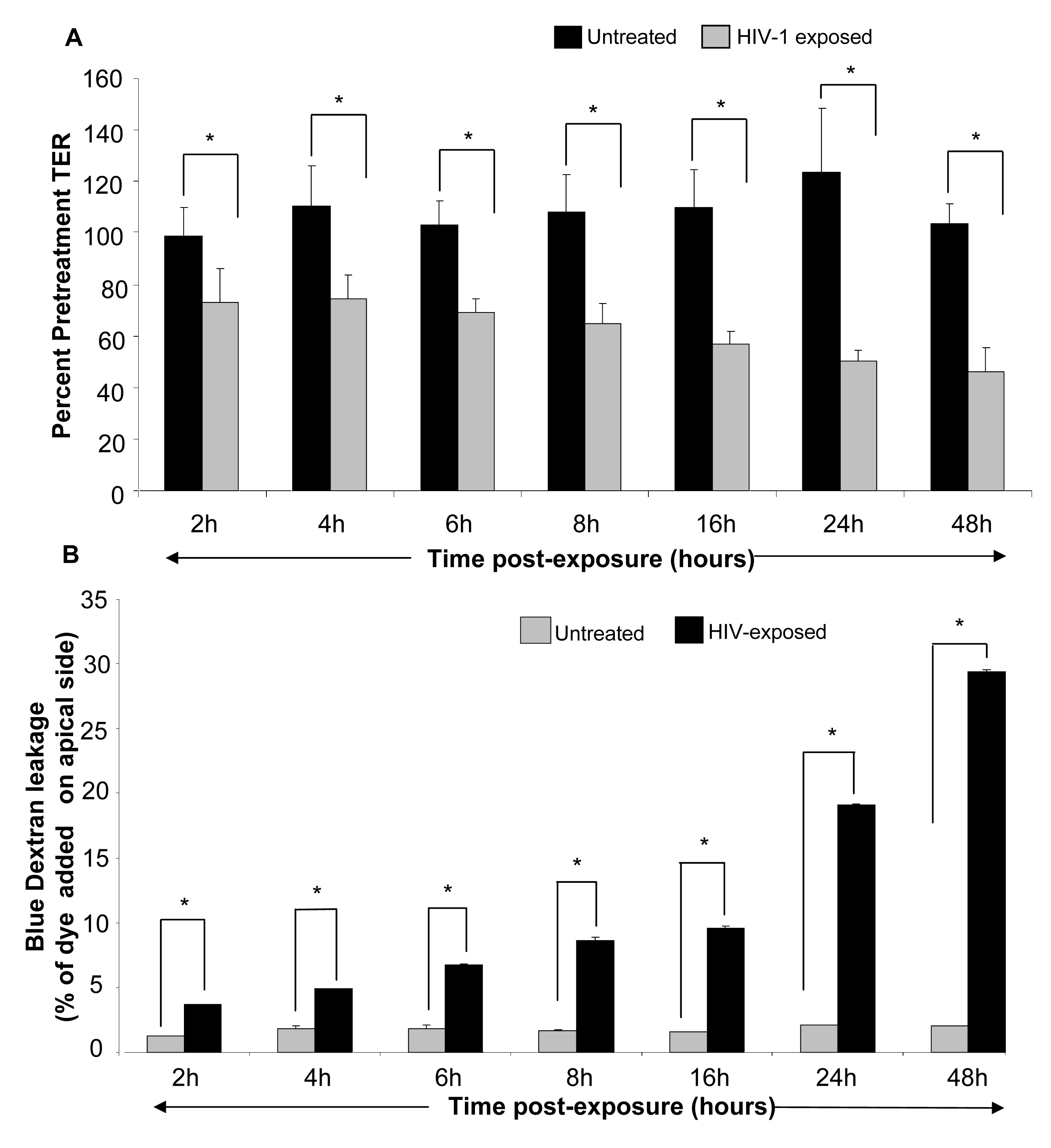 Primary genital epithelial monolayers were exposed to HIV-ADA (R5 strain, 10<sup>6</sup> infectious viral units/ml, p24 280ng/ml ) for 2h, 4h, 6h, 8h, 16h, 24h and 48h.