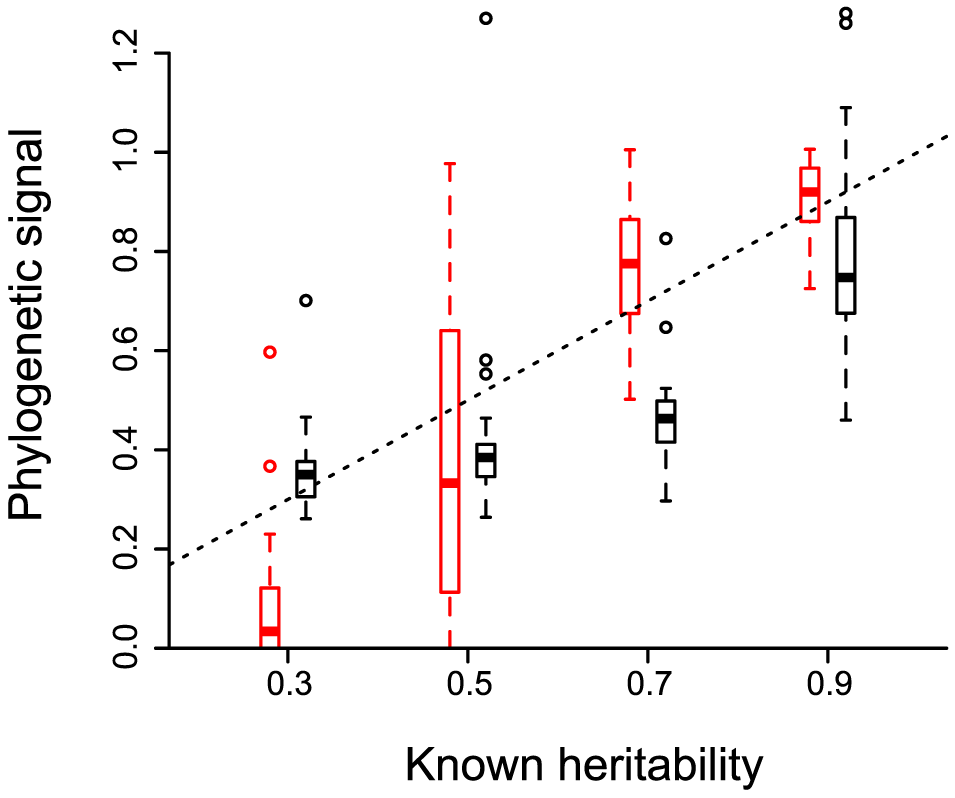 Phylogenetic signal estimated for evolutionary processes with known heritability.