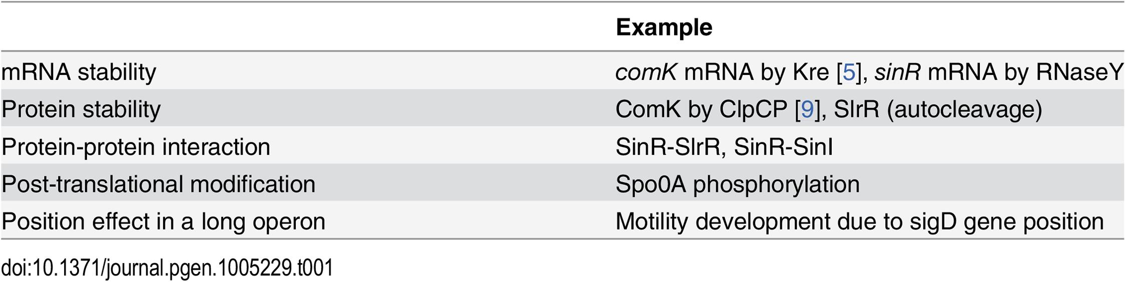 Molecular mechanisms behind bistable gene expression in <i>B</i>. <i>subtilis</i>.