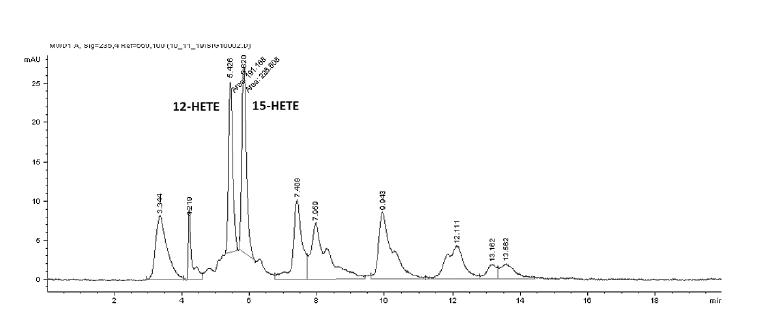 SP-HPLC záznam produktov inkubácie vzorky s kyselinou arachidónovou