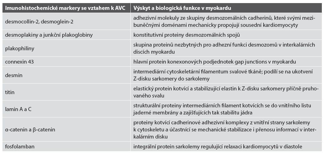 Přehled imunohistochemicky prokazatelných markerů s prokázaným či možným vlivem v patogenezi či diagnostice AVC.