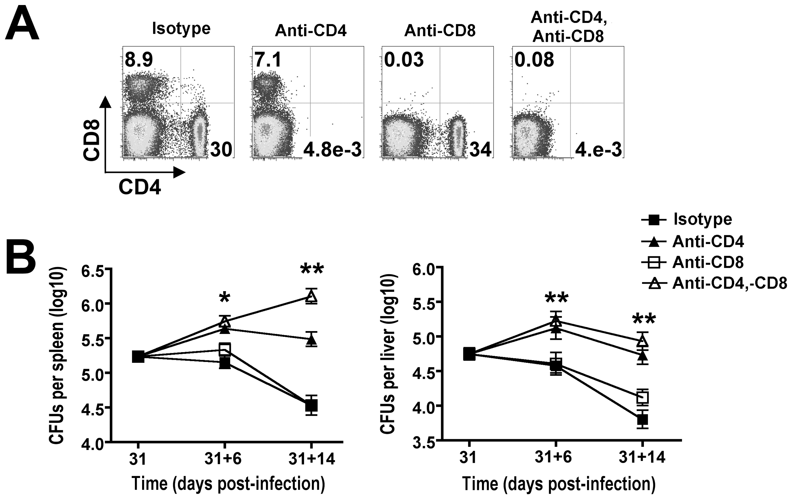 CD4<sup>+</sup> T cells are required for reductions in <i>Salmonella</i> pathogen burden during persistent infection.