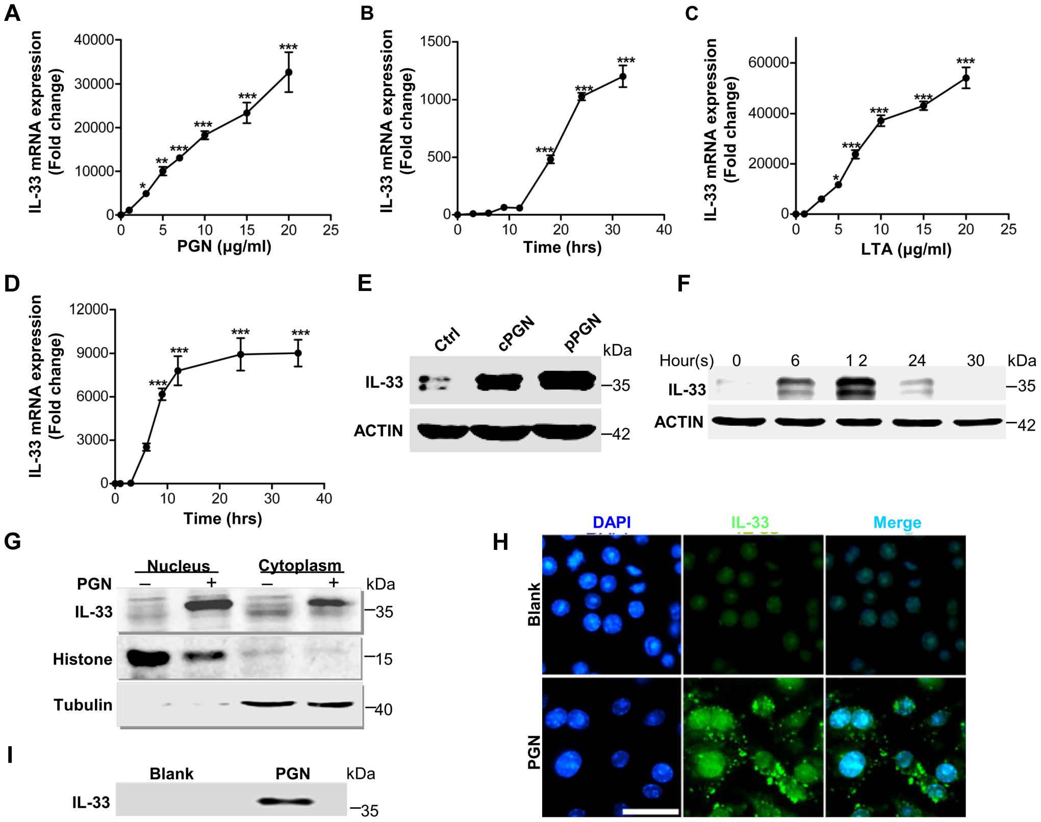 IL-33 expression induced by <i>S.aureus</i>-derived PGN and LTA in macrophages.