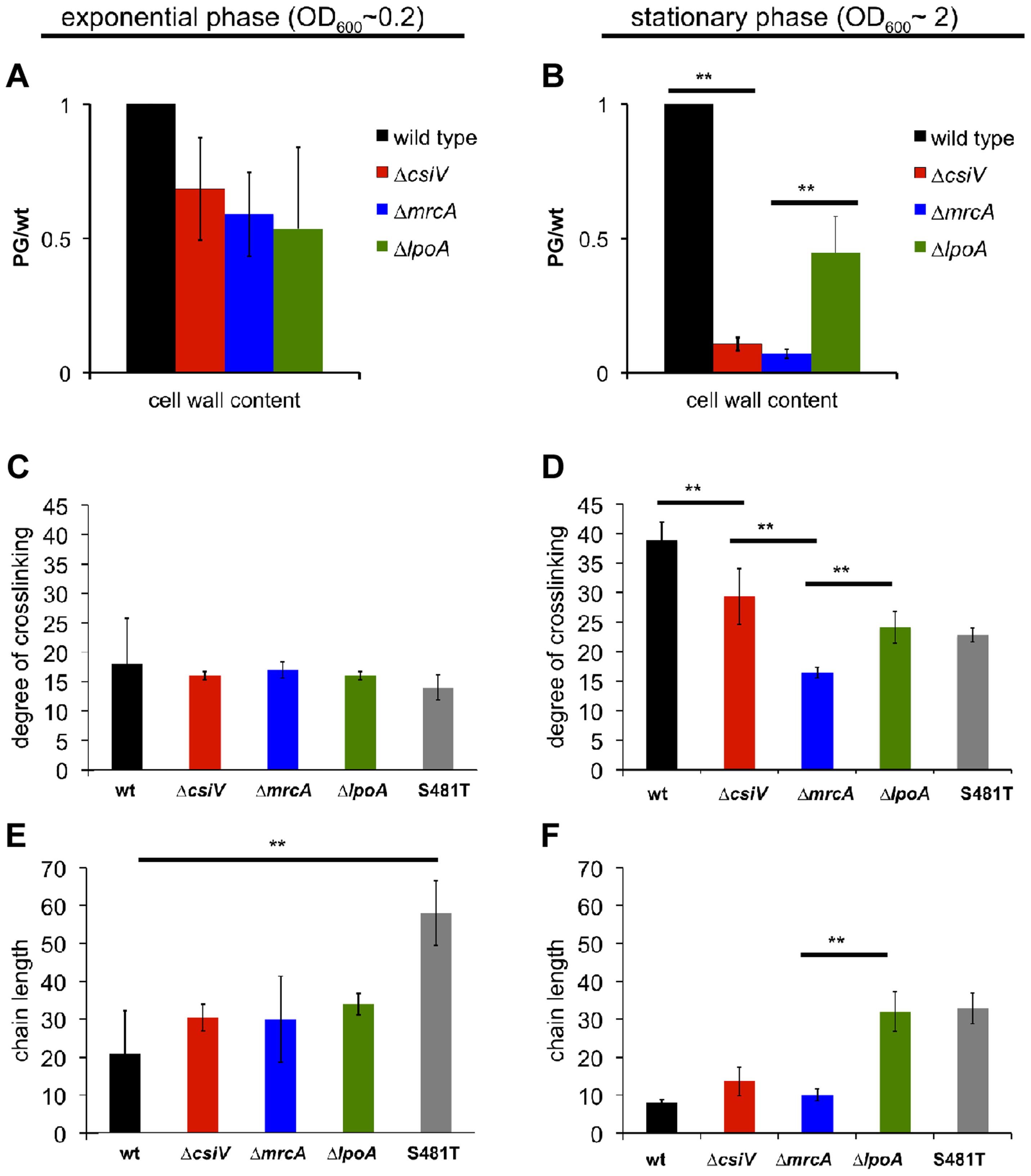 Muropeptide analysis of the <i>csiV</i>, <i>mrcA</i> and <i>lpoA</i> mutants.