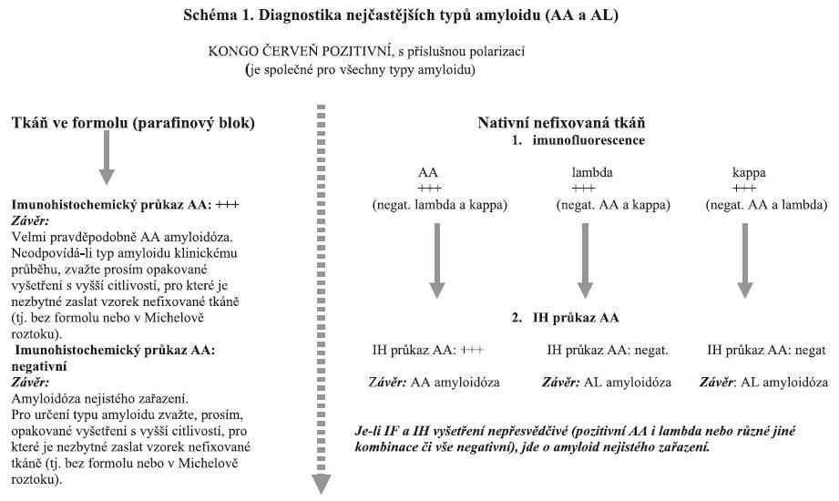 Interpretace diagnostických závěrů shrnuje schéma 1.