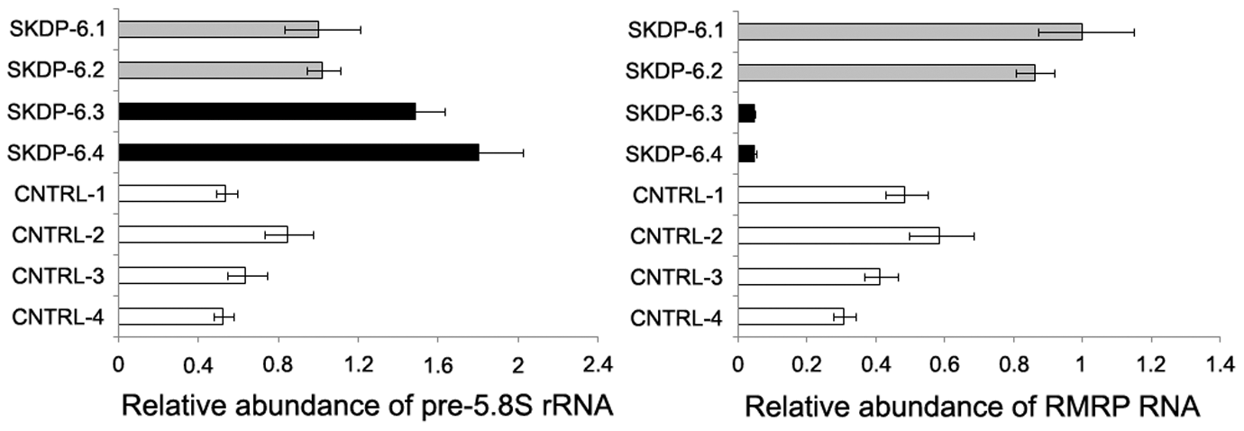 Relative abundance of pre-5.8S rRNA and <i>RMRP</i> RNA in the affected individuals.