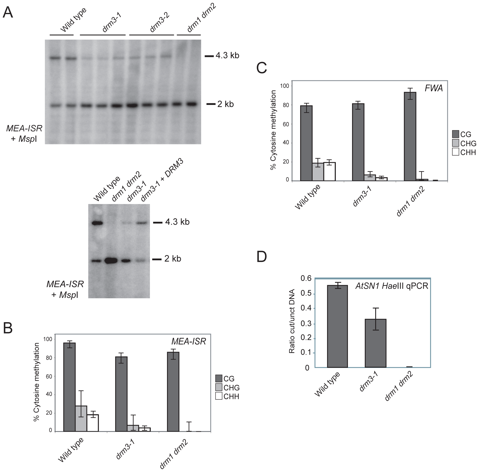 <i>DRM3</i> is required for normal maintenance of non-CG methylation.