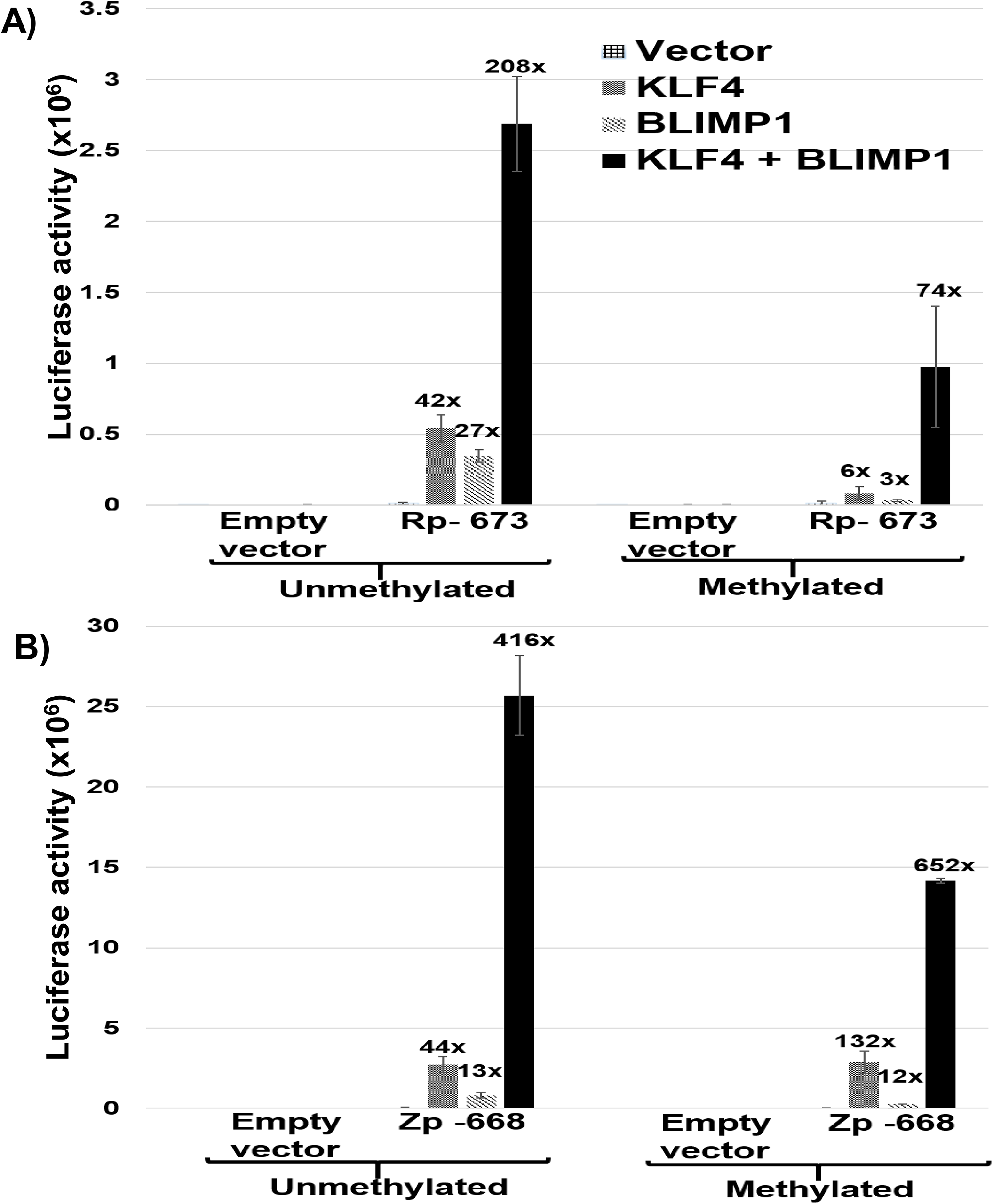 KLF4 synergizes with BLIMP1 to activate both Rp and Zp, irrespective of the promoter methylation state.