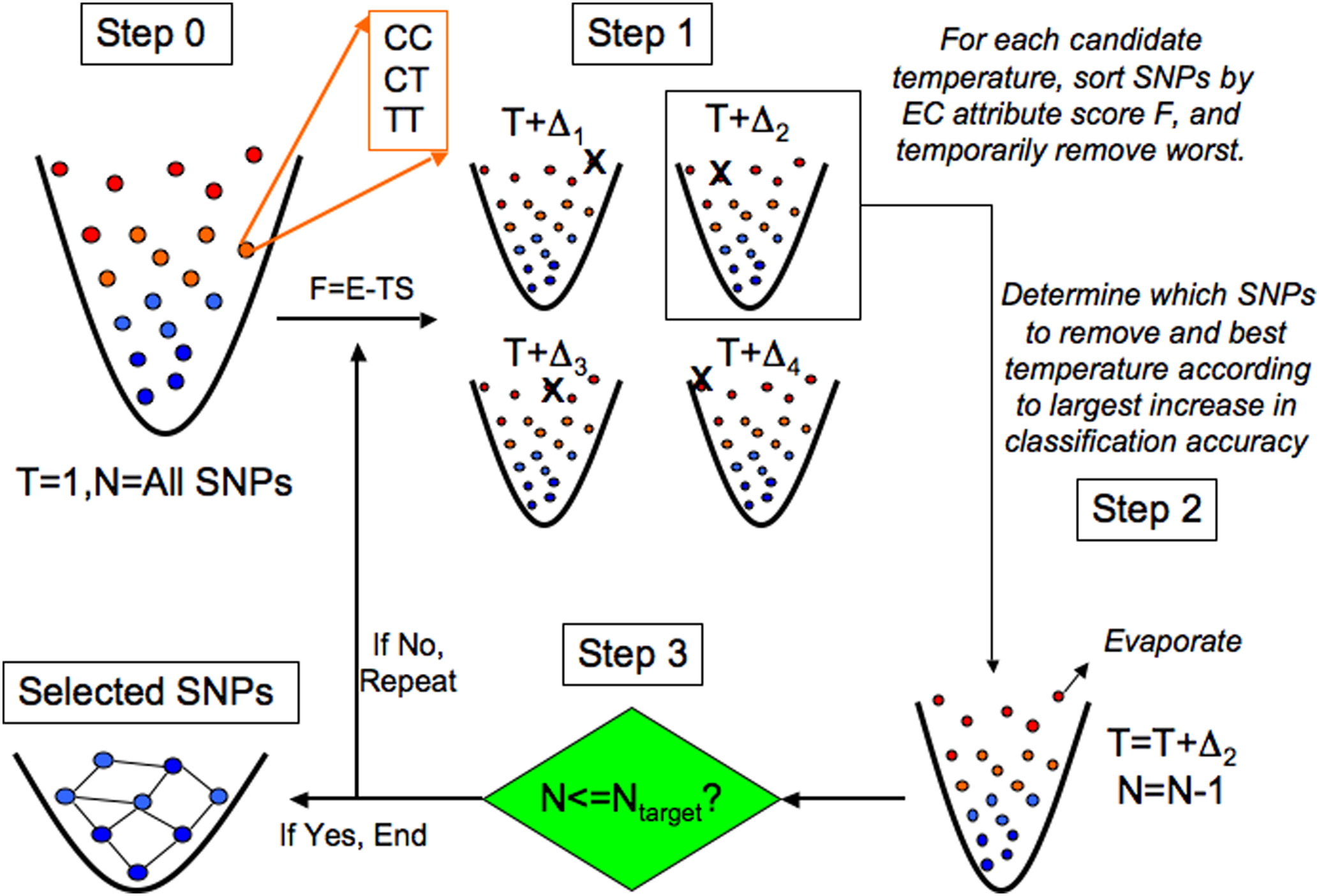 Evaporative Cooling (EC) feature selection algorithm.