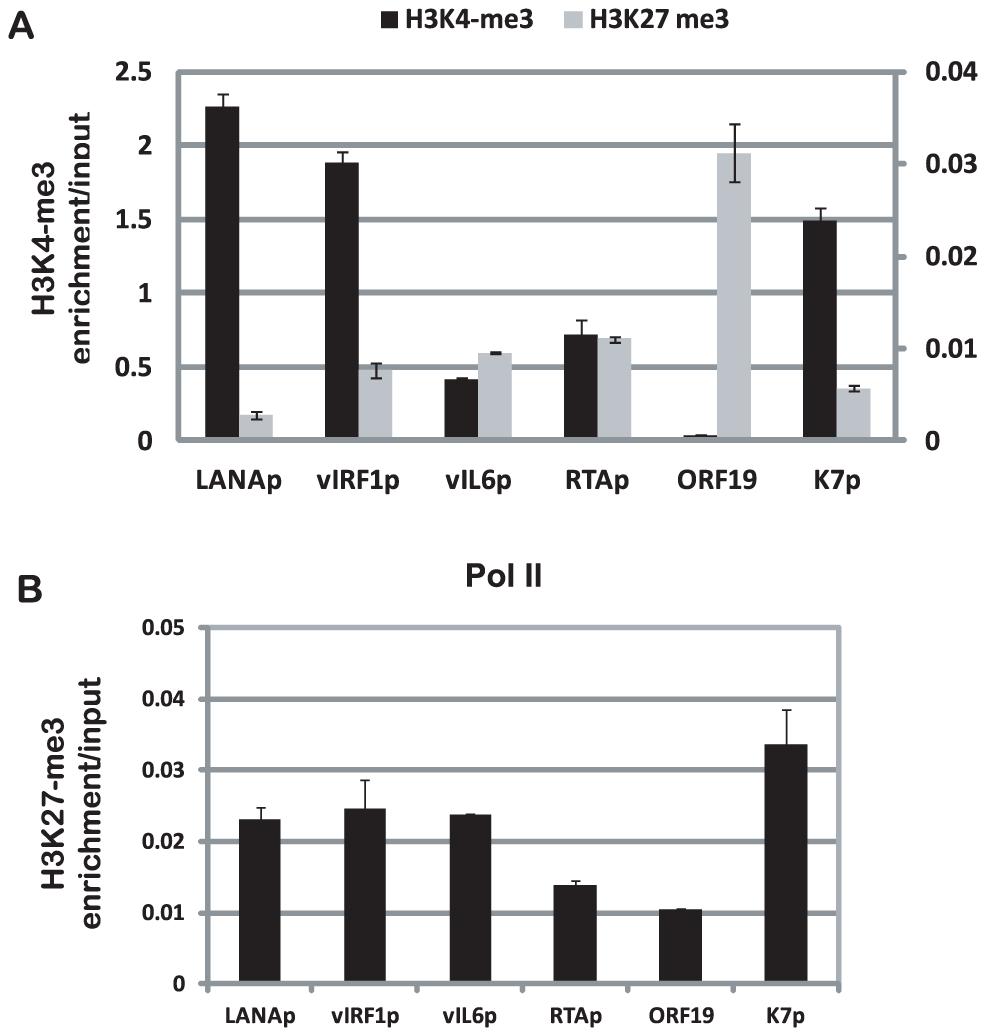 Validation of ChIP-seq data by quantitative PCR.