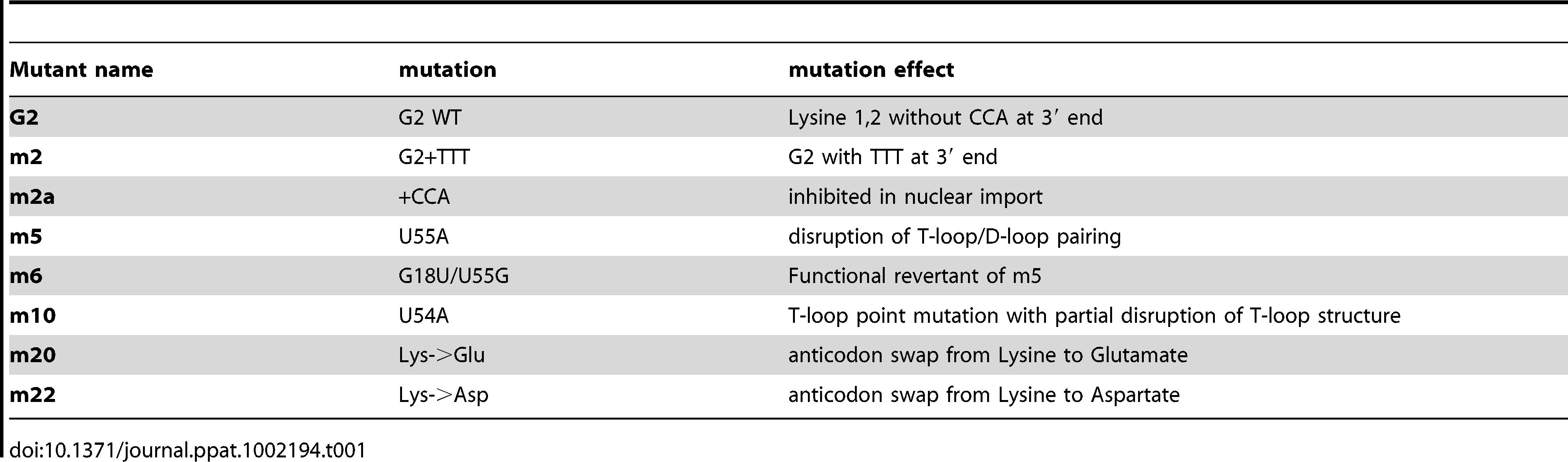 tRNA mutants generated and their characteristics.