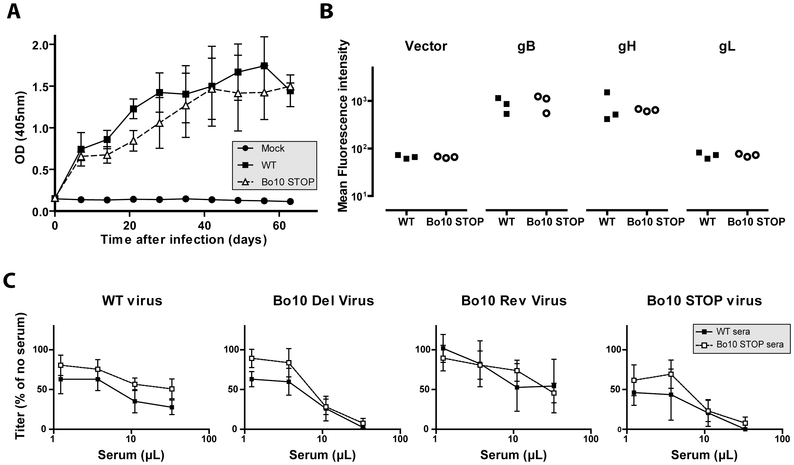Immunogenicity of BoHV-4 lacking gp180.