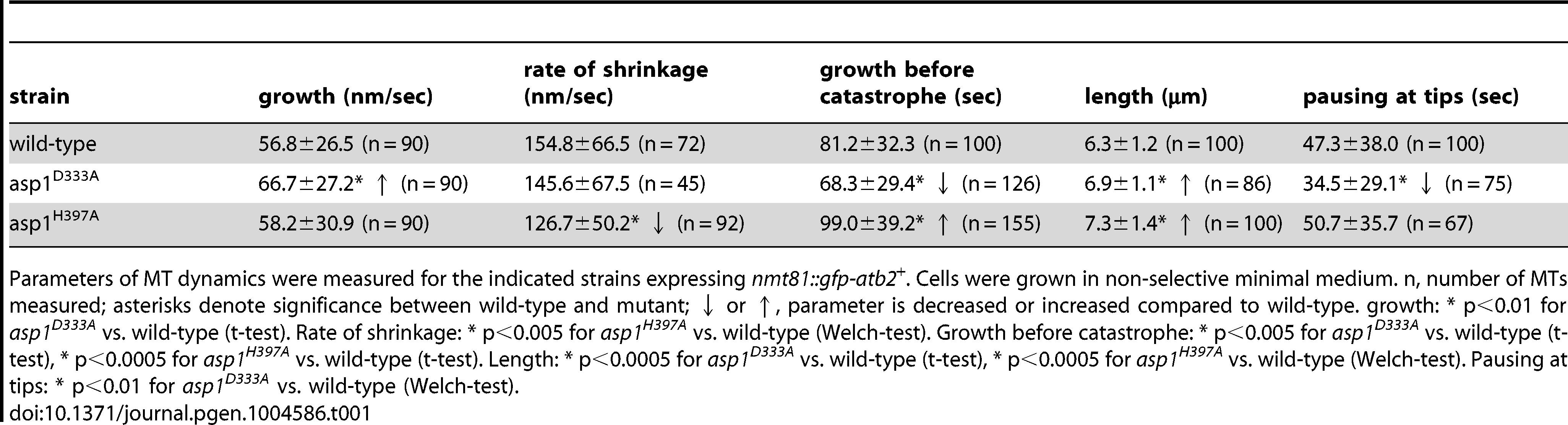 Interphase MT dynamics in <i>asp1</i> variant strains.