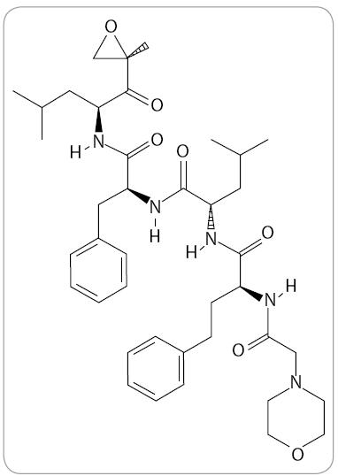 Struktura carfilzomibu (The Pub-Chem Project).