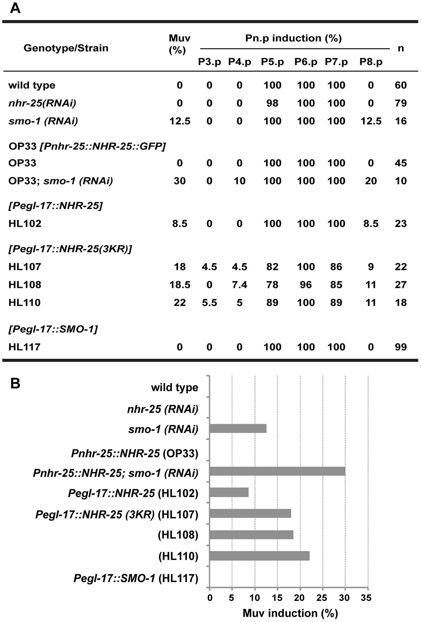 Overexpression of unsumoylated NHR-25 causes multivulva induction.