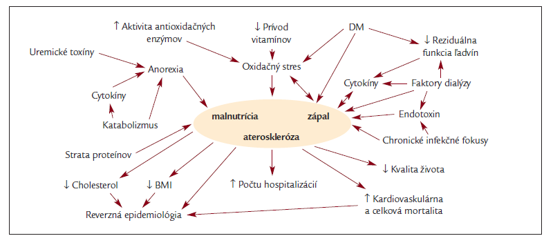 Schéma etiopatogenézie a dôsledkov syndrómu MIA (DM: diabetes mellitus, BMI: body mass index).