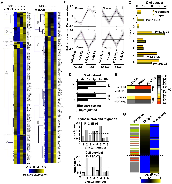"""Unique"" and ""redundant"" ELK1-bound regions regulate distinct sets of target genes."